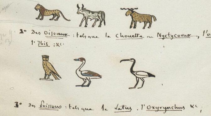 Conférence en ligne – Les trésors de la BnF en direct: le manuscrit de la Grammaire égyptienne de Champollion