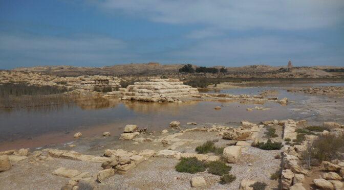 Conférence en ligne mercredi 5 mai 18h30: Le port lacustre de Taposiris Magna (Égypte)